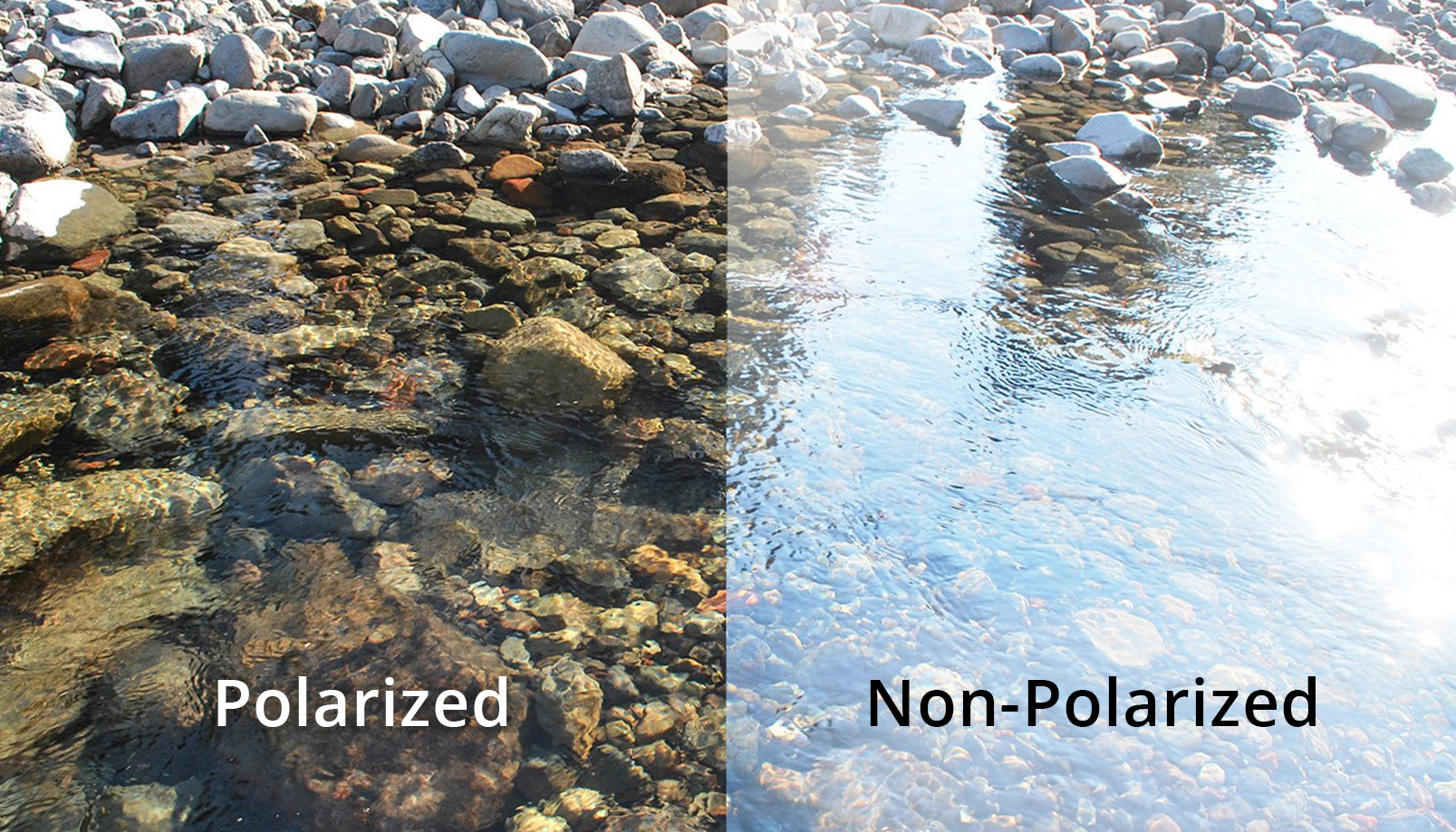 polarized vs non-polarized lenses for glasses